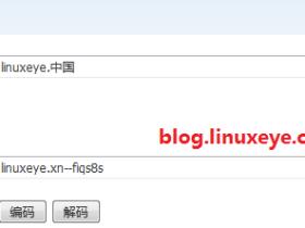 Nginx中文域名配置